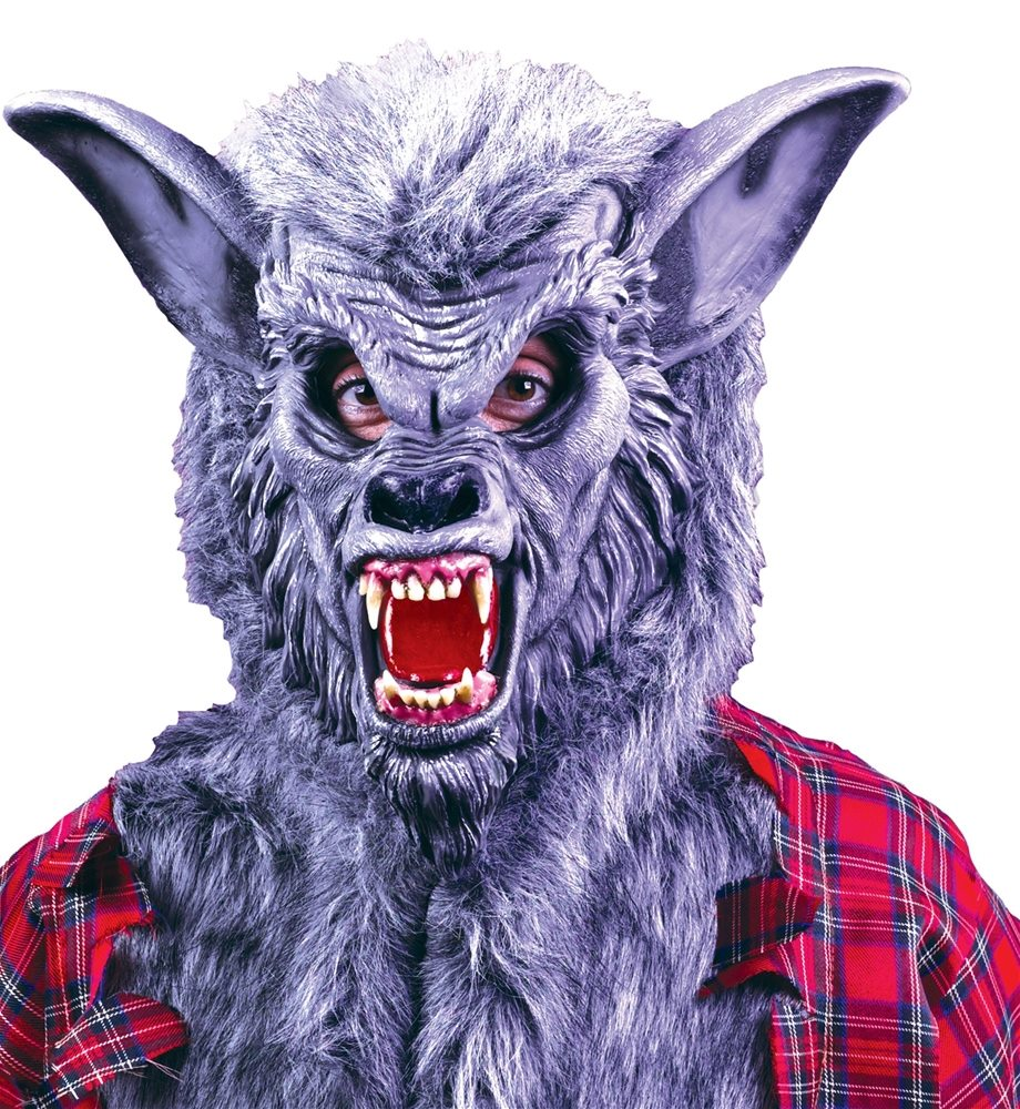 Picture of Grey Werewolf Mask