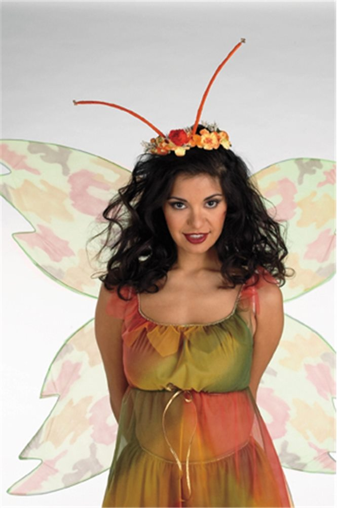 Picture of Fairy Wings and Headpiece