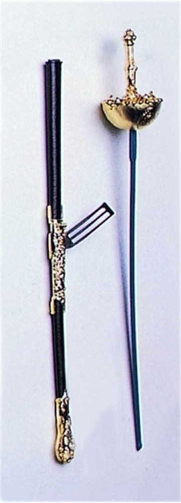 Picture of Musketeer Sword
