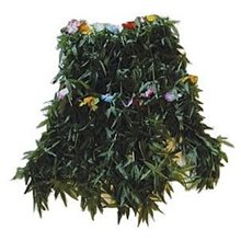 Picture of Adult Flower Leaf Skirt