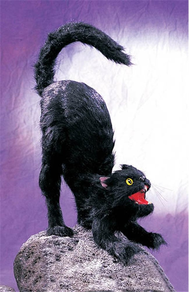 Picture of Stretching Cat Prop