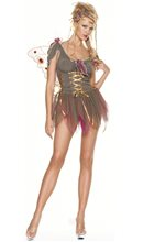 Picture of Garden Fairy Adult Womens Costume