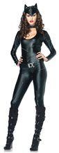 Picture of Feline Femme Fatale Adult Womens Costume