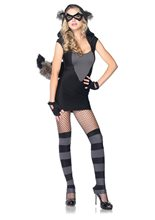 Picture of Risky Raccoon Adult Womens Costume