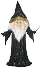 Picture of Wizard Mascot Adult Mens Costume