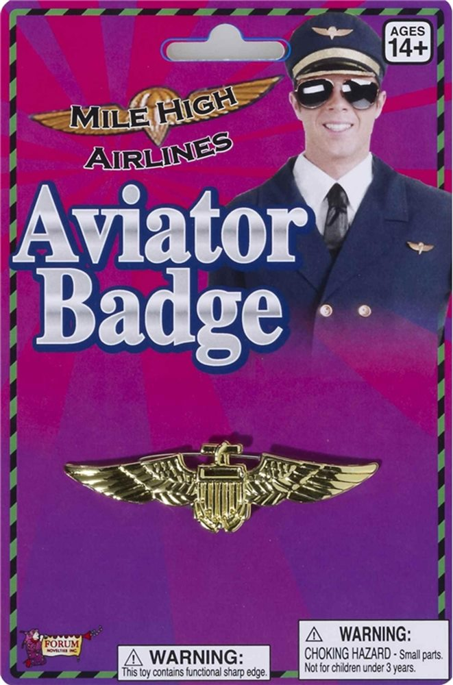 Picture of Gold Aviator Pin