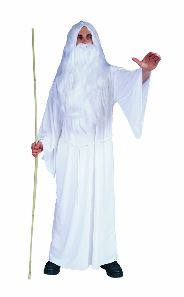 Picture of White Wizard Adult Mens Costume