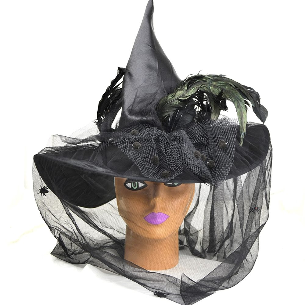 Picture of Black Witch Hat With Feather Veil
