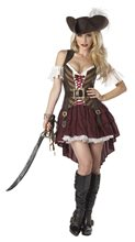 Picture of Sexy Swashbuckler Adult Womens Costume
