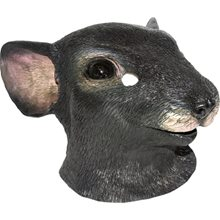 Picture of Mouse Adult Mask