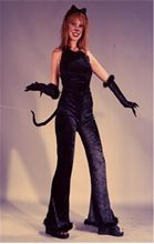 Picture of Deluxe Feline Velvet Adult Women Costume