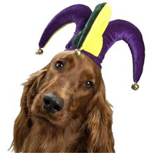 Picture of Jolly Jester Hat Pet Costume