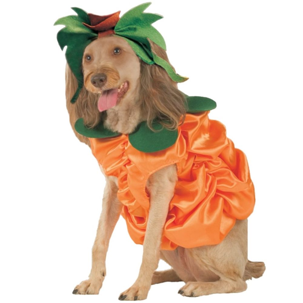 Picture of Pumpkin Patch Pooch Pet Costume