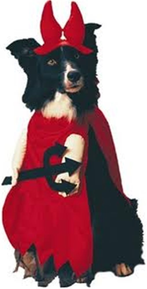 Picture of Devil In Disguise Pet Costume