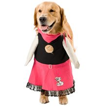Picture of 50s Fifi Pet Costume