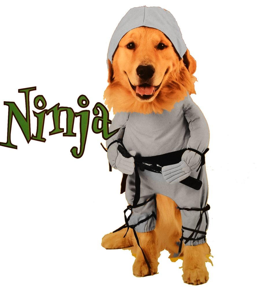 Picture of Ninja Dog Costume