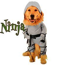 Picture of Ninja Dog Costume