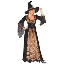 Picture of Deluxe Taffeta Coffin Witch Adult Costume