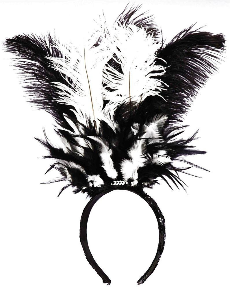 Picture of Black & White Feather Headband