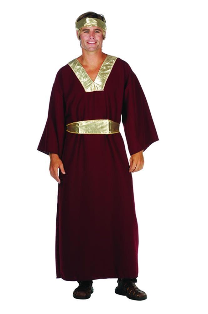 Picture of Wiseman Wine Adult Men Costume