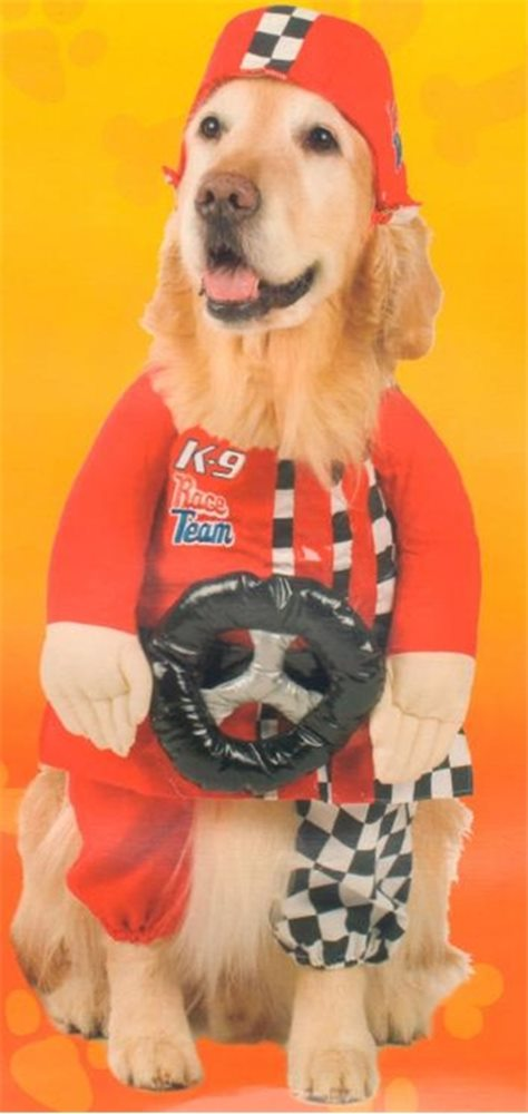 Picture of K-9 Race Team Pet Costume