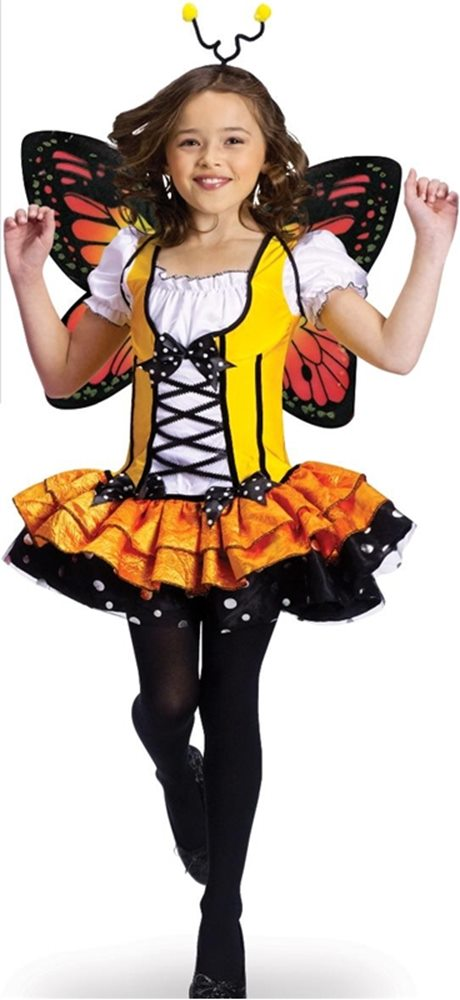 Picture of Butterfly Princess Child Costume