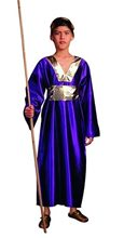 Picture of Wiseman Child Costume
