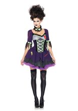 Picture of Frankenstein Bride Adult Women Sexy Costume