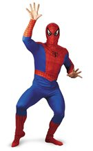Picture of Marvel Spider-Man Adult Mens Costume