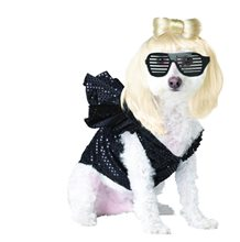 Picture of Lady Gaga Pet Costume