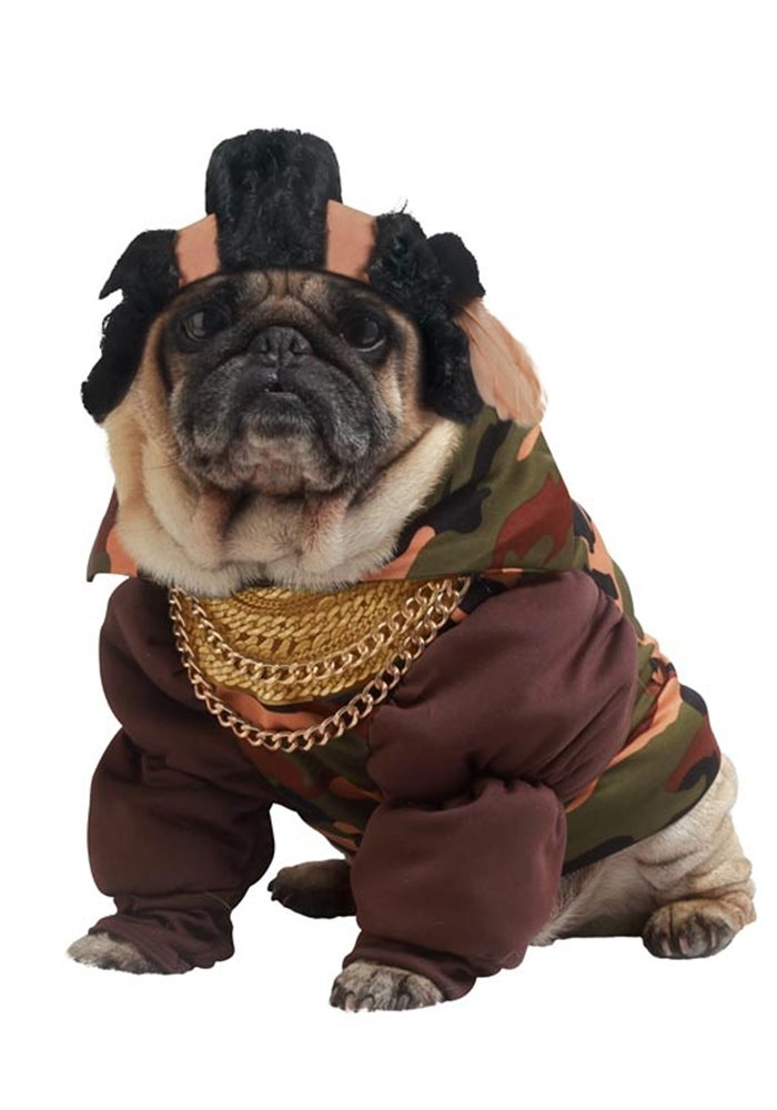 Picture of Pity The Fool Pet Costume