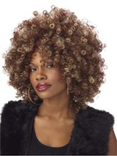 Picture of Fine Foxy Fro Wig