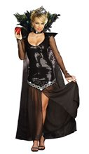 Picture of Queen Of Mean Adult Womens Costume
