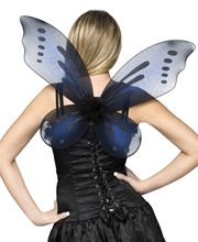 Picture of Fairy Adult Wings (More Colors)