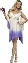 Picture of Goddess Diana Adult Womens Costume