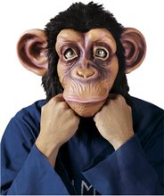 Picture of Comical Chimp Mask