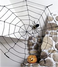 Picture of 5ft Rope Spider Web