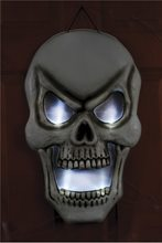 Picture of Light-up Skull Wall Door Decor 22in
