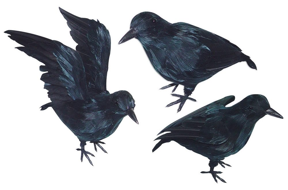 Picture of Small Realistic Black Crow