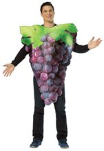 Picture of Get Real Grapes Adult Men Costume