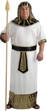Picture of Pharaoh Adult Mens Costume