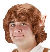 Picture of Bilbo Baggins Wig With Ears