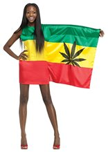Picture of Rasta Flag Girl Adult Womens Costume