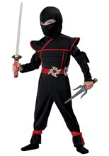 Picture of Stealth Ninja Toddler Costume