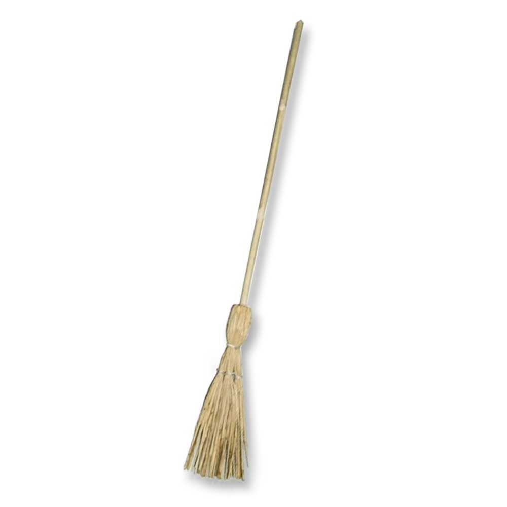Picture of Witch's Broom