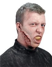 Picture of Don Post Loose Stitches Prosthetic