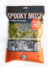 Picture of Spooky Chartreuse Reindeer Moss