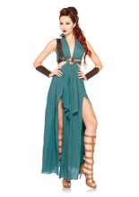 Picture of Warrior Maiden Adult Womens Costume