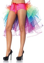 Picture of Rainbow Bustle Skirt