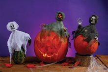Picture of Pumpkin Hugger